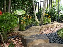 Tropical Backyard Designs Tropical Backyard Designs Miami U2013 Izvipi Com