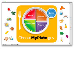 healthy plate coloring page healthy plate cliparts free download clip art free clip art