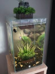 interior decor fluval chi accessories fluval edge chi