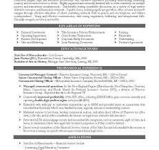lawyer cv template legal jobs curriculum vitae job application