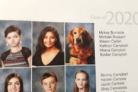 a yearbook dog got a yearbook picture for the most heartwarming reason
