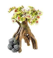 vivarium decoration co uk