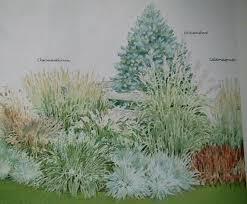 ornamentalgrassgarden gif