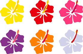 drawn hawaiian flowers free download clip art free clip art