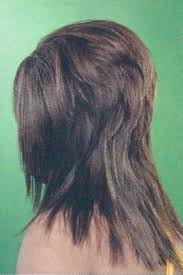 hair with shag back view 264 best hairstyles images on pinterest hairstyles beauty tips
