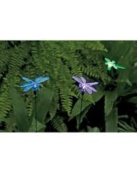 Dragonfly String Lights by Dragonfly Solar Lights Garden Stakes Set Of 3 Gardeners Com