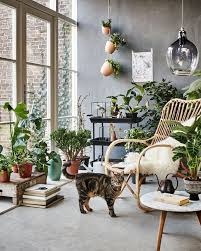 room with plants living room living room decoration with plants different way to nurani
