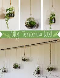 diy terrarium wall