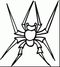 magnificent printable spider coloring pages with spider coloring
