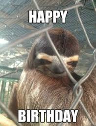 Sloth Asthma Meme - pin by islamic people on viral memes pinterest birthday memes