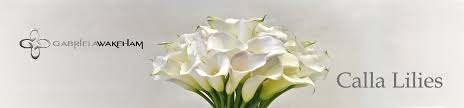 cala lillies calla lilies nyc designer florist high end modern flowers by gw