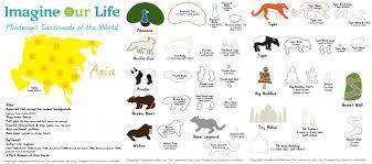 animals asia montessori wall u0026 quietbook