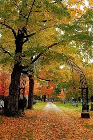 17 best maine images on pinterest portland maine acre and