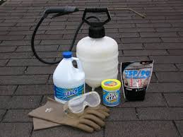Moss Cleaner For Patios How To Remove And Prevent Black Algae Stains On Asphalt Shingle