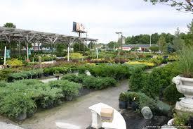 Kansas City Botanical Gardens by Garden Center U0026 Plant Nursery From Rosehill Gardens In Kansas City