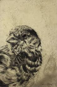 cool sparrow tattoos 147 best sparrows images on pinterest sparrows animals and