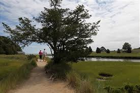Nauset Marsh Cape Cod - visitors flock to cape cod national seashore pictures getty images