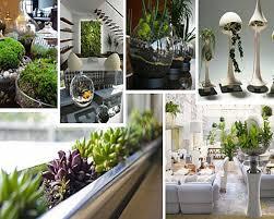 Indoor Garden by Indoor Garden Decor Home Design Ideas