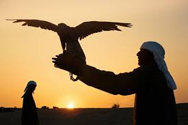 carry on jatta jeep hd wallpaper this photo of a saudi prince u0027s 80 giant birds on a plane is going