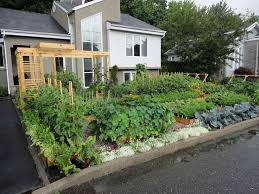 602 best urban gardening images on pinterest flat gardening