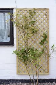 elite lattice trellis 1 8m x 0 6m from grange gardensite co uk