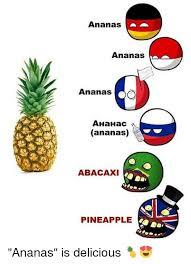 Ananas Pineapple Meme - ananas ananas ananas ahahac ananas abacaxi pineapple ananas is