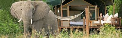 luxury south africa honeymoon romantic travel u0026 tours south