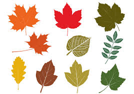 leaves free brushes 957 free downloads