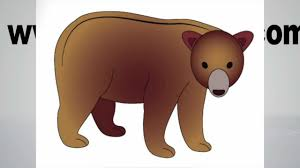 how to draw a bear step by step youtube