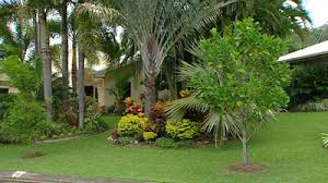 landscaping small front garden ideas queensland