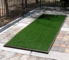 Patio Lawn And Garden Pup Lawn Complete Patio Lawn Kit 3 U0027 X 10 U0027