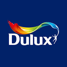 dulux visualizer jo on the app store