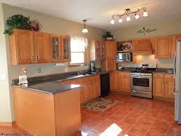 Color Ideas For Kitchens Kitchen Kitchen Color Ideas Unique Terracotta Floor Tile Kitchen