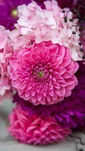221 best patterns images on pinterest prints floral