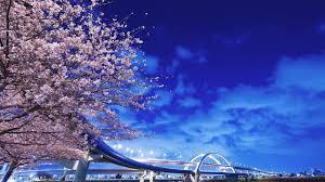 Hokkaido Buffet Long Beach Ca by E7f70bc80e3e14739b3c49i224388026 Jpg
