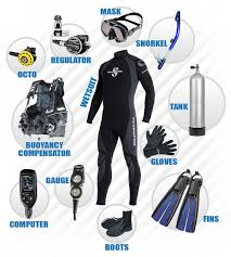 Florida travel gear images Best 25 scuba travel ideas travel ideas diving jpg