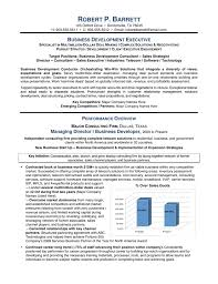 Executive Resume Format Template Executive Resume Example Business Development Executive Resume