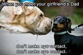 Funny Animal Memes - 23 funny animal memes and pictures of the day cute daily lol pics