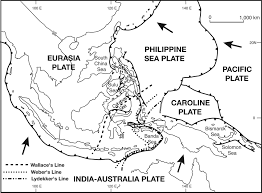 Map Of Se Asia by Late Palaeozoic And Mesozoic Tectonic And Palaeogeographical