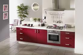 modele de cuisine equipee cuisine équipée modèle design brillant parme flickr