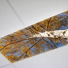 decorative fluorescent light panels 8 best flourescent light hidden images on pinterest ceiling ideas