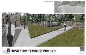 Dynamic Roofing Concepts by T E R R A F L U X U S Vegitecture