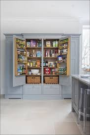 Diy Garage Storage Cabinets Kitchen Kitchen Cabinets Food Storage Cabinet Office Wall