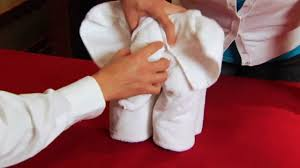 learning how to make towel animals on the carnival dream youtube