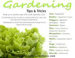 garden design garden design with tips and ideas to make your