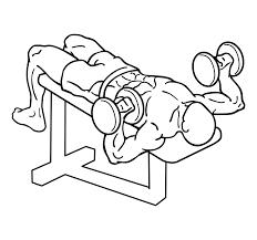 decline dumbbell bench press everkinetic