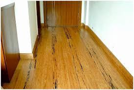 bamboo flooring installation cost gurus floor