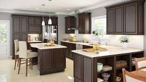 Kitchen Cabinets Coquitlam Kitchens With Espresso Cabinets Espresso Shaker Ee Kitchen