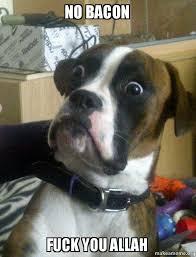 Dog Bacon Meme - no bacon fuck you allah skeptical dog make a meme