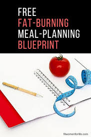 100 free meal plan template get the fat burning meal template